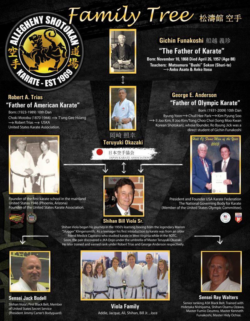 viols karate history