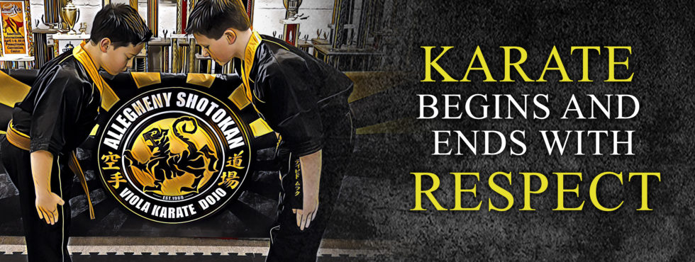 karate irwin pa